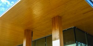 CLT panels and glulam posts building